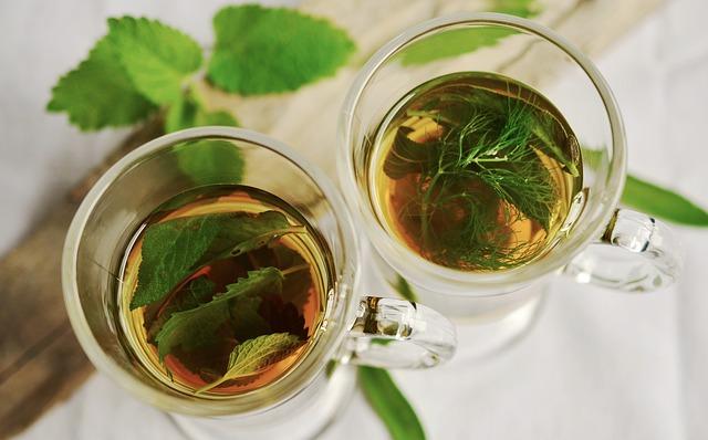 penggolongan obat herbal